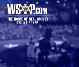 WSOP About Image